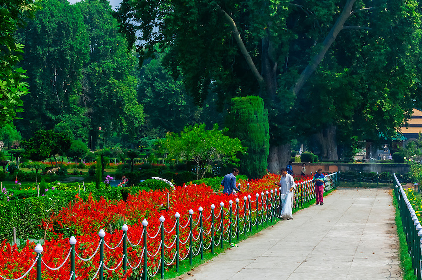 Top 10 Beautiful Gardens In India Famous Gardens In India Abhibus Community